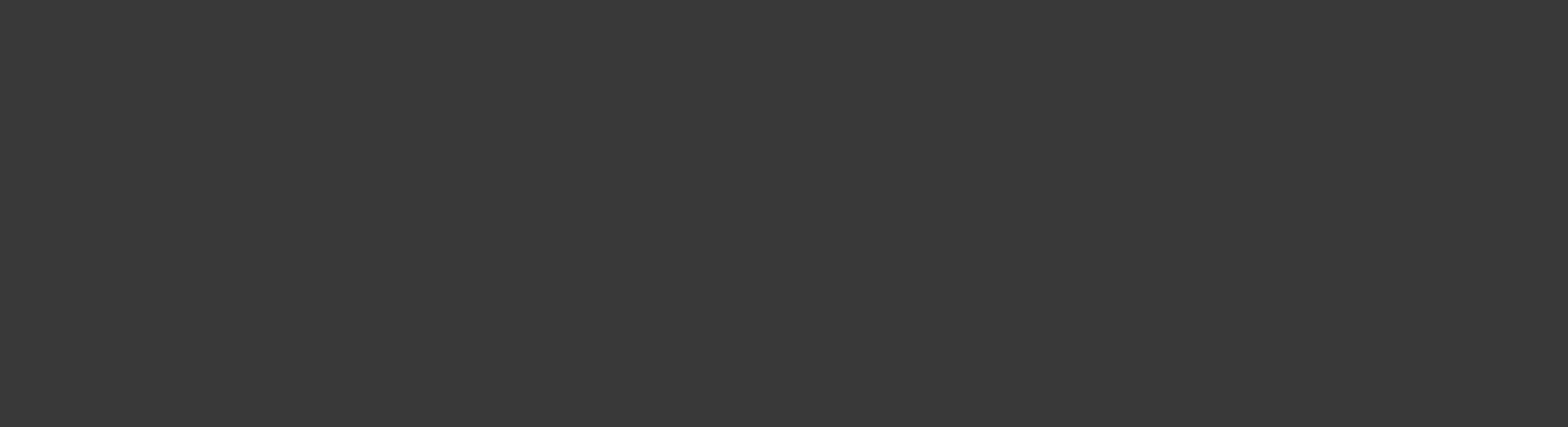 Logo_Fabian_Reinhardt_grau
